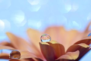 A place for droplets by pqphotography