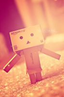 Danbo by EliseEnchanted
