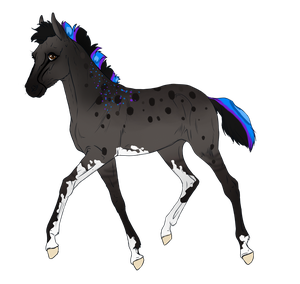 7845 Padro Foal Design by ChocolateQuill