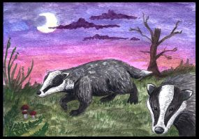 Badgers by Psydrache