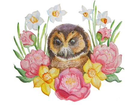 Asian Brown Owl Peonies and Narcissus by Redilion