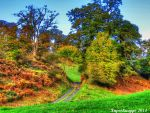 Autumn Hill by supersnappz16