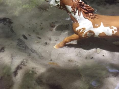 Clear water-Schleich by LazyHcustomtack