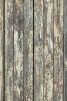 Wood Texture - 26 by AGF81