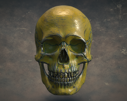 Metal Skull Cinema 4D Substance Painter V-Ray by botshow