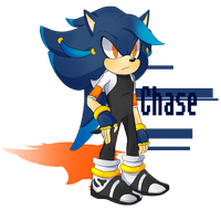 Chase the Hedgehog by Incognito-Torpedo