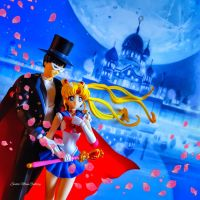S.H. Figuarts Sailor Moon Crystal Tuxedo Mask by smgallery9