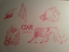 Ciar Sketch - TEST[2] by k0FFe