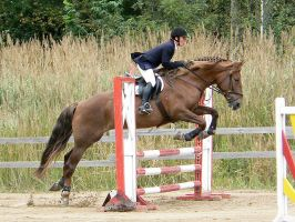 Showjumping 21 by wakedeadman
