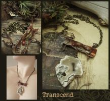 Transcend by LuthienThye