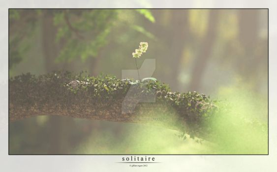 Solitaire by GillsDigitalWorld