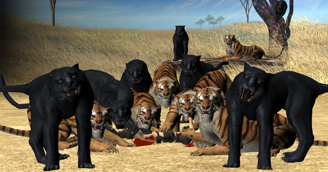 The Big Cats' Kill by austinwolfclaw