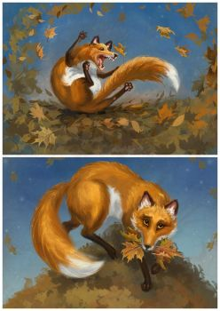 About foxes and leaves 03 by LouieLorry