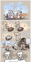 How a bagbean is born and grows up by griffsnuff