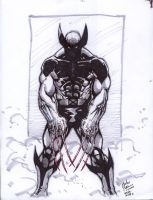 Wolverine n Shadows by Kid-Destructo