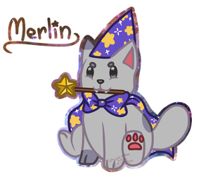 Merlin the Wizard Cat by Stormie-The-Kitty