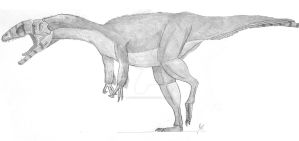 Profile: Australovenator wintonensis by Qianzhousaurus