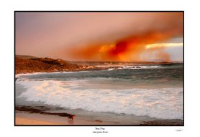 the fire by TomMontgomery