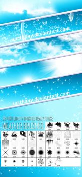 Weather Bruhses FREE by sarthony
