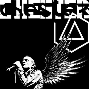 Chester Dark Wing White Wing - square format by Takwann