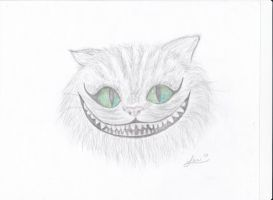 Cheshire Cat by FlyingColors68