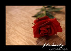 fake beauty by dieZera
