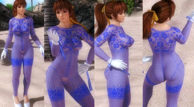 Kasumi Fishnet Bodystocking (improved texture) by funnybunny666