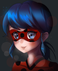 Miraculous Portrait by hinoraito