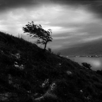Against the wind by ernesto1de