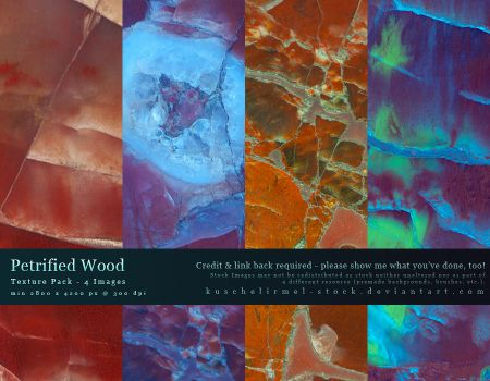 Petrified Wood - Texture Pack by kuschelirmel-stock