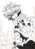 Fairy Tail - Natsu 'Come On' by ShinsArt