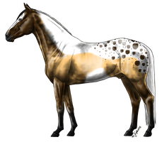 Bay/buckskin Tobiano OTA -CLOSED- interest check? by TheAdoptArtist