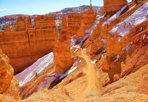 Pathway Through Bryce Canyon by JeFr316