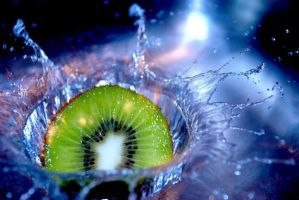 Kiwi Falls into Deep Water by dany25