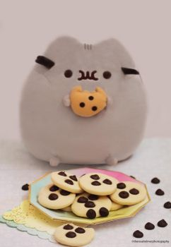Pusheen Heart Chocolate Chip Cookies by theresahelmer