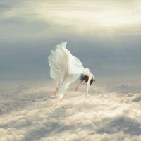 Free Falling Dream by RGDart