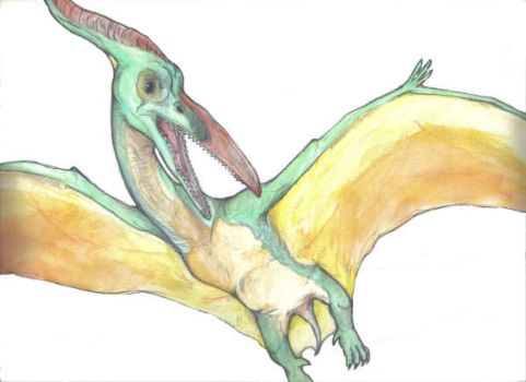 Pteranodon by Stalinismo