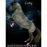 Cody by horsesrunfree