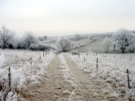 A frosty day in Luxembourg #2 by maradong