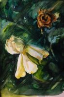 New gardenia, dead gardenia.  Happy... New Year? by hrutger