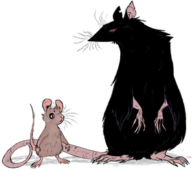 mouse and rat by Spoonfayse