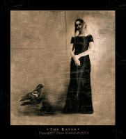 The raven by lostgirl