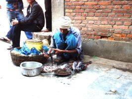 Fishmonger of Thamel '12 by ms-americanpie