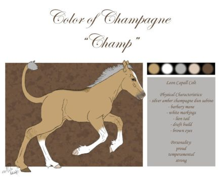 #68 Color of Champagne by casinuba