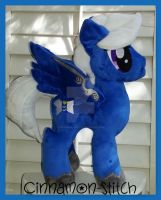 My Little pony Plushie Commissio OC  Psygriffio by CINNAMON-STITCH