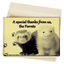 Oregon Ferret Shelter Thank You card