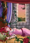 comm: Sleeping Beauty 00
