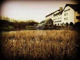 Copthorne by Ginkoftw
