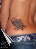panther by Tattoo-TENb