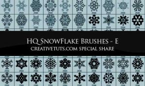 Snowflakes PS Brushes - E by Grasycho